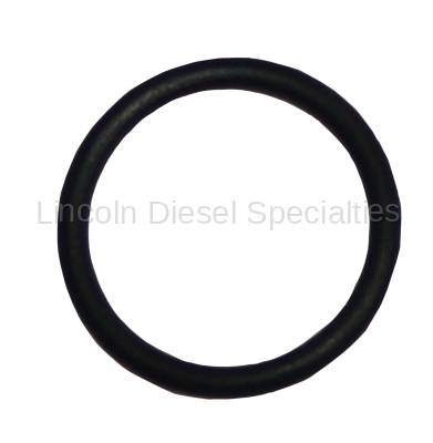 PPE - PPE Viton O-Ring for Fuel Race Plug  (2001-2010)