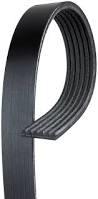 Engine - Belts & Pulleys - GM - GM AC Delco Serpentine Belt Single Alternator (2001)
