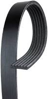 Engine - Belts & Pulleys - GM - GM AC/ Delco Dual Alternator Serpentine Belt  (2006-2007)